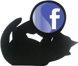 FB Kitty